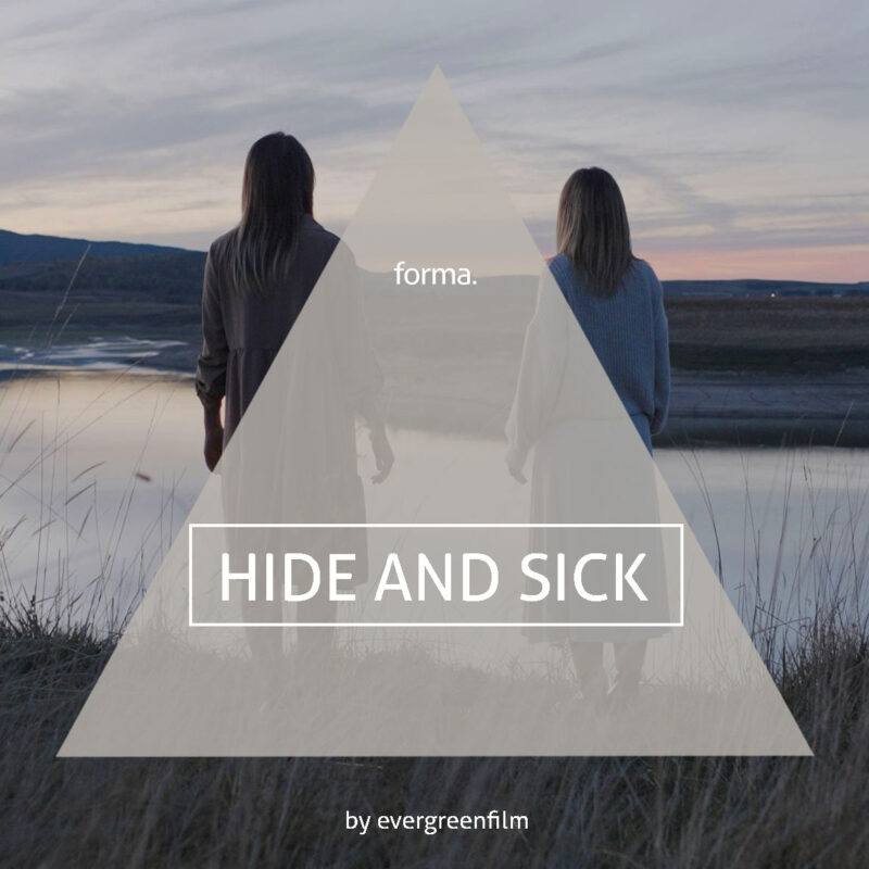 FORMA Luts by evergreenfilm - HIDE AND SICK